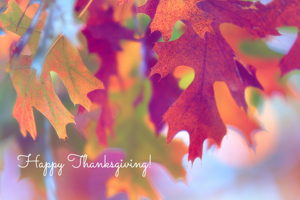 thanksgiving_red_shutters